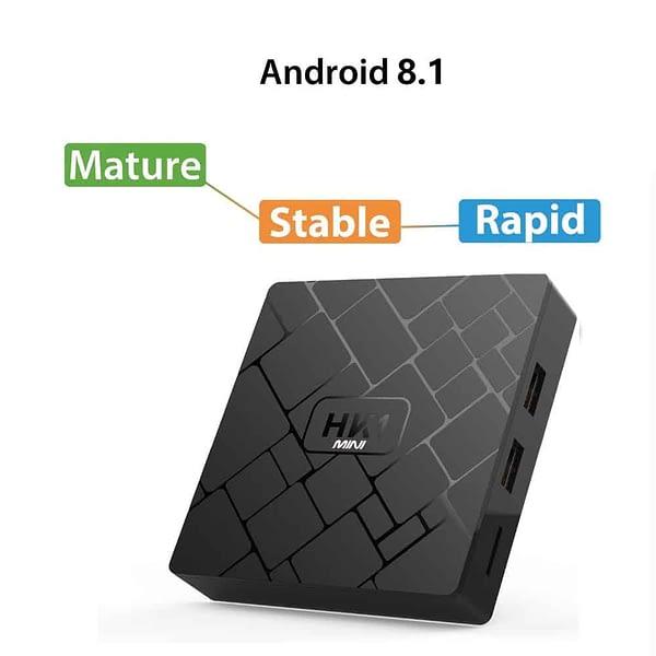 HK1 MINI Android 8.1 + 2GB RAM 16ROM H.265 4 k TV + 12 mois d'abonnement Premium IP TV